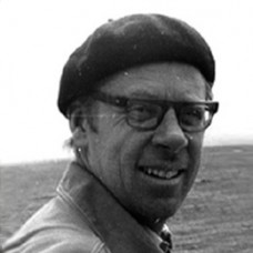 Даркевич Владислав Петрович (1934-2016)